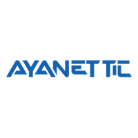 Ayanet TIC